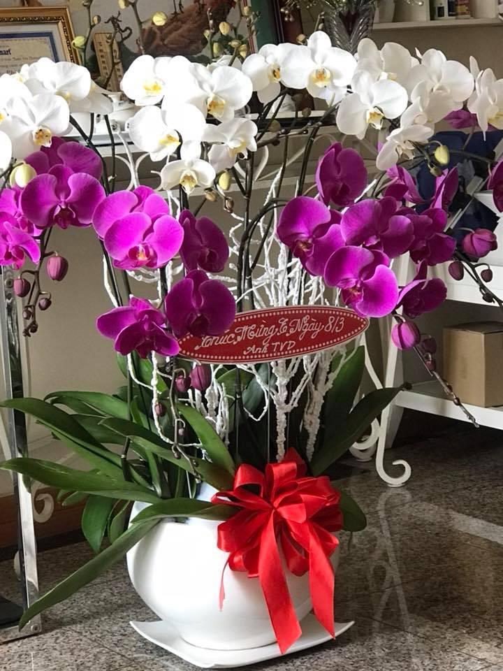 Phi Thanh Vân khoe món quà giá trị từ tình cũ đại gia nhân ngày 8.3 - Ảnh 3