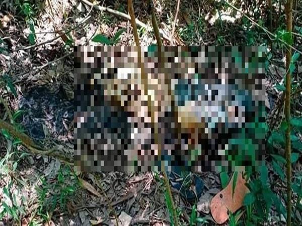 Nóng: Bàng hoàng phát hiện thi thể nam thanh niên trong rừng sau khi mất tích hơn 1 tháng