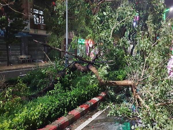 Bão số 6: 2 người tử vong, 200.000 hộ dân bị mất điện