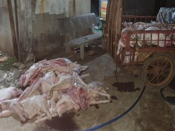 Bắt quả tang cơ sở mua heo chết giá 50 nghìn đồng/con về xẻ thịt, bán cho công nhân KCN ở Đồng Nai