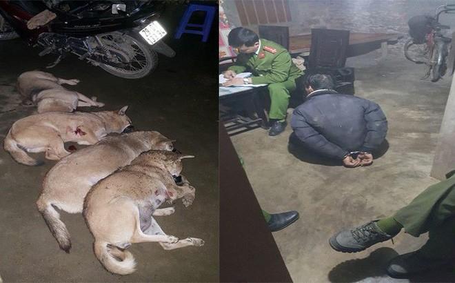 Bắt trộm gần 1 tạ chó bị người dân tóm gọn - Ảnh 1