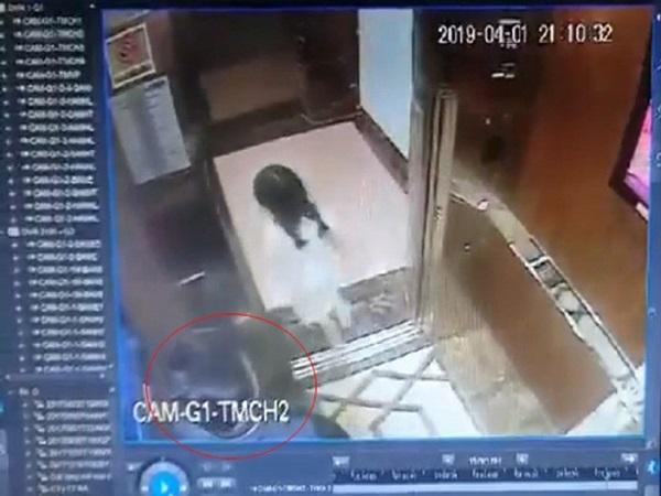 """Bé gái bị dâm ô trong thang máy: Liệu có bị phạt giống vụ """"200 nghìn""""?"""
