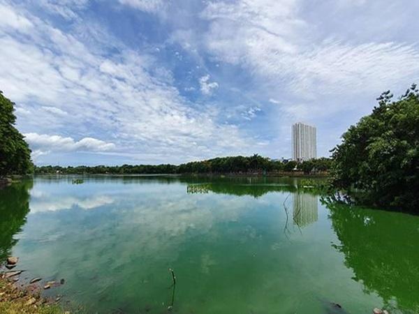 Đà Nẵng: Thu hồi nhiều ngàn mét vuông đất công viên bị xẻ bán trái phép