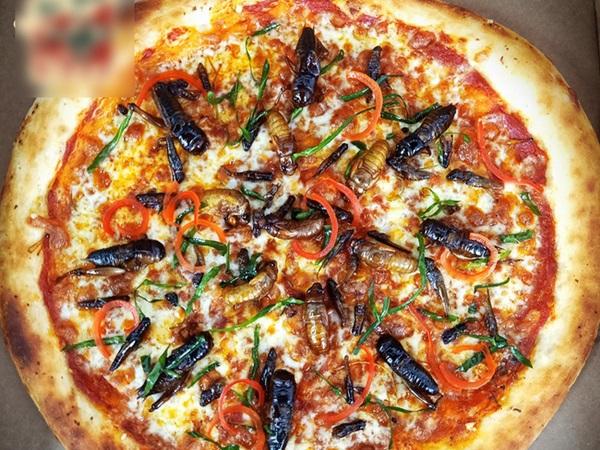Hà Nội: Xuất hiện loại pizza có topping dế mèn, châu chấu, ve sầu khiến khách hàng yếu tim chạy... mất dép