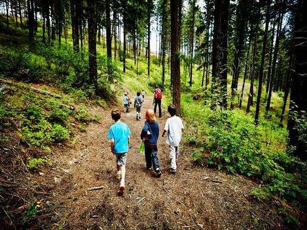 Mỹ: Hơn 200 trẻ nhiễm COVID-19 khi đi cắm trại hè