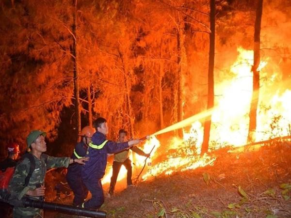 Người đàn ông khai nhận đốt rác gây cháy rừng kinh hoàng tại Hà Tĩnh