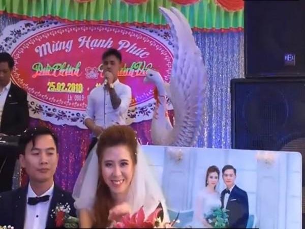Người yêu cũ hát 'Tiễn em theo chồng' trong đám cưới, cô dâu biểu cảm kỳ lạ, nhìn sang chú rể còn bất ngờ hơn
