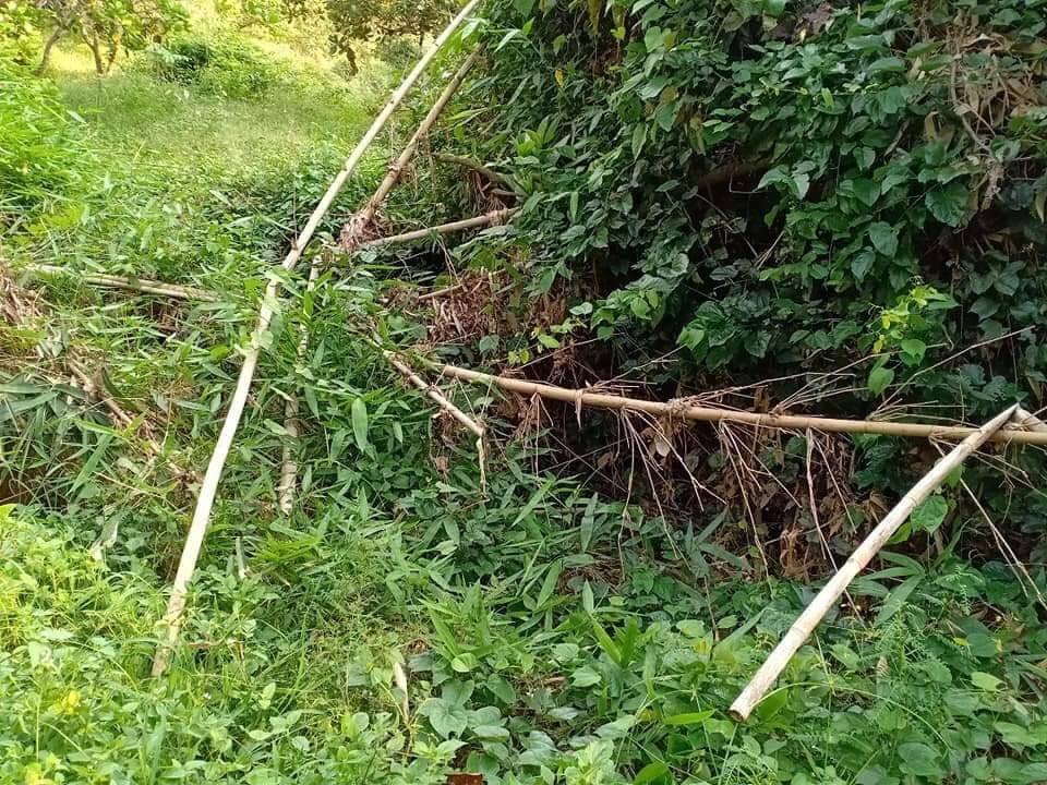 Vụ phát hiện thi thể không đầu ở Bình Phước: Hé lộ danh tính nạn nhân