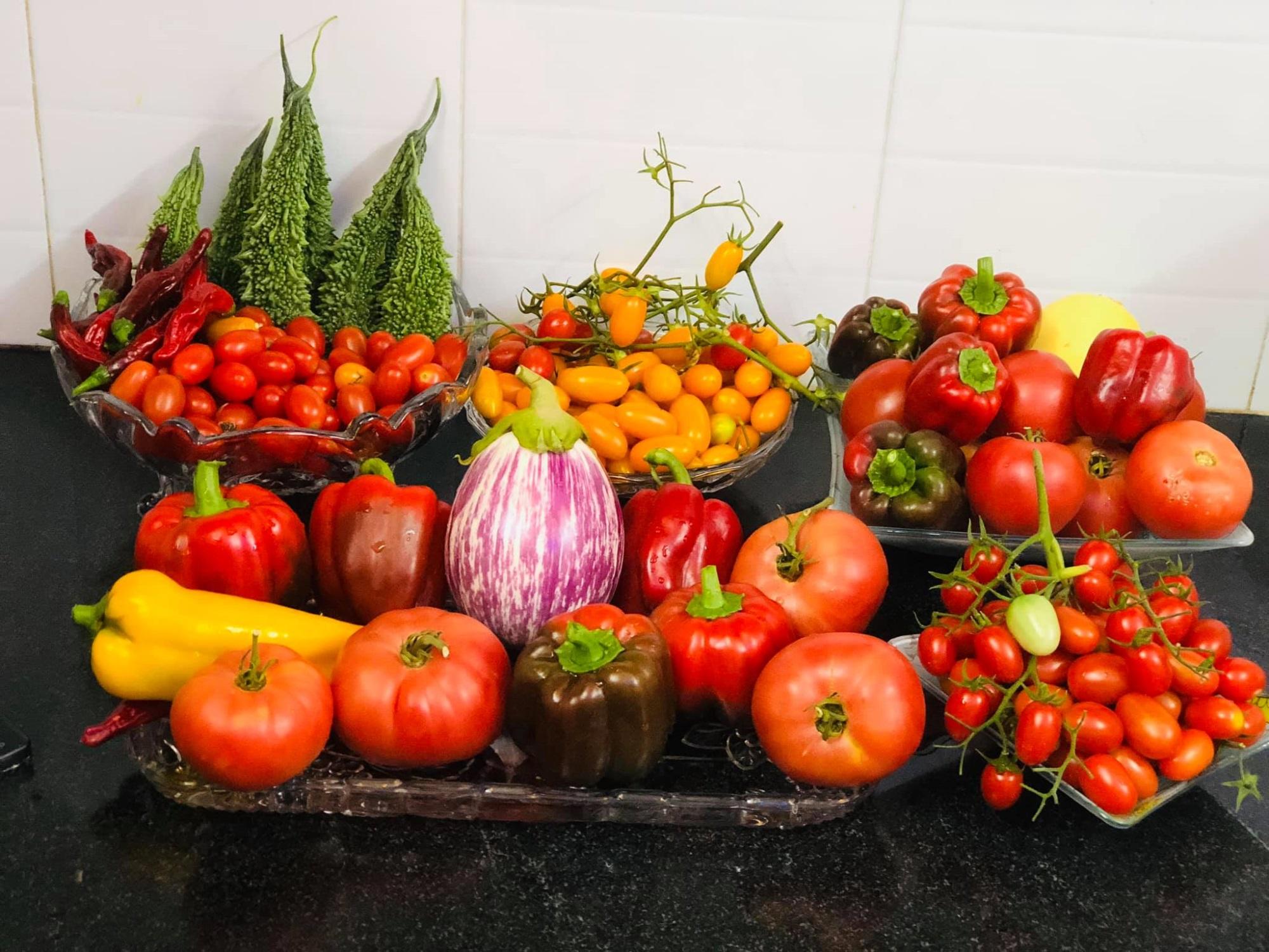 Khoe khu vườn sum sê trĩu quả, mẹ nội trợ tung luôn 'bí kíp' cho những ai mới 'tập tành' làm nông dân - Ảnh 12
