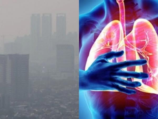 3 loại vitamin tốt cho phổi khi không khí đang bị ô nhiễm
