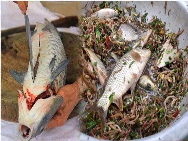 4 kiểu chế biến cá trôi sạch chất dinh dưỡng, rước độc tố bệnh tật vào người