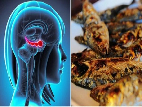 5 thực phẩm bổ não giúp bạn thông minh hơn