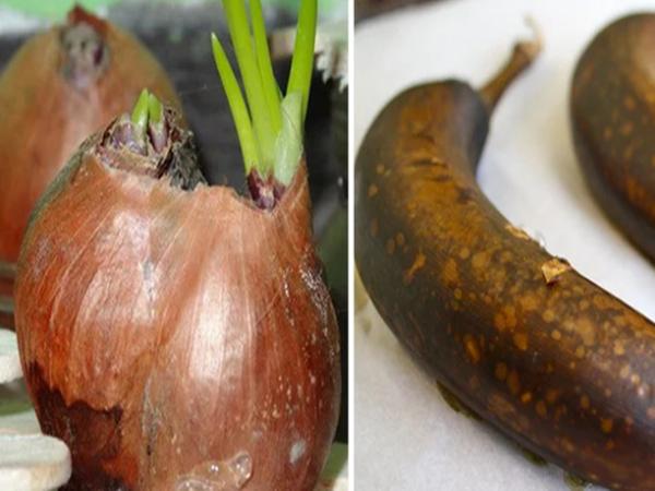 9 rau củ quả tuyệt đối không bảo quản trong tủ lạnh kẻo sản sinh độc tố