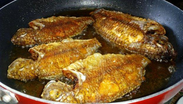 9 người tuyệt đối không được ăn cá, ai cũng phải biết để không rước độc vào người - Ảnh 1