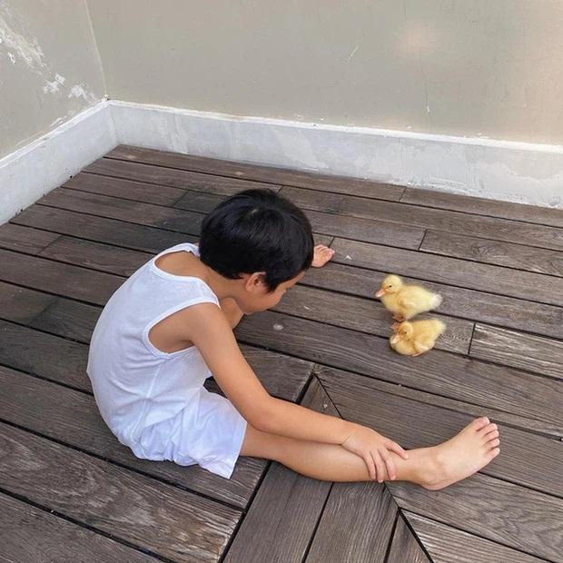 """Tại sao Hà Tăng gọi quý tử là """"chàng trai có 1-0-2 của mẹ""""? Xem cuộc sống của cậu bé sau cánh cửa hào môn là đủ hiểu! - Ảnh 6"""
