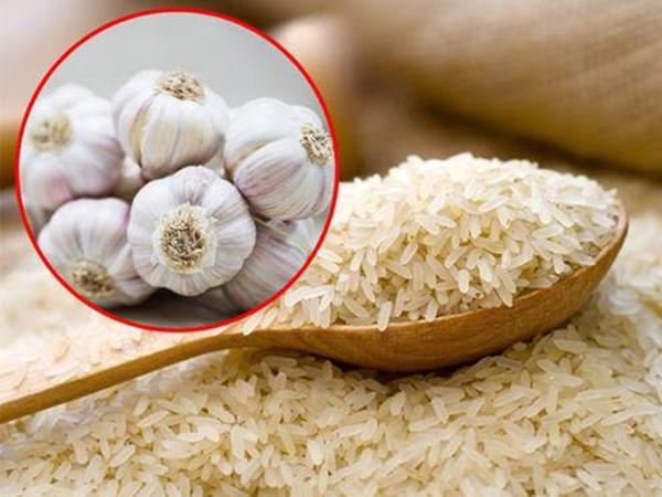 Mẹo bảo quản gạo không bị mối mọt, ẩm mốc từ nguyên liệu tự nhiên