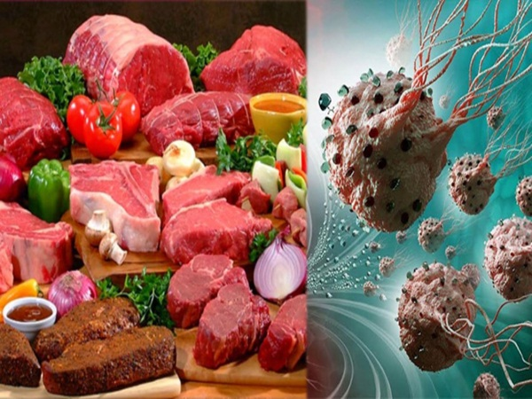 Có phải ăn nhiều chất sẽ nuôi tế bào ung thư phát triển?