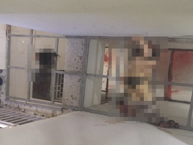 TP.HCM: Phát hiện thi thể phụ nữ bị đứt lìa đầu tại chung cư ở quận 7