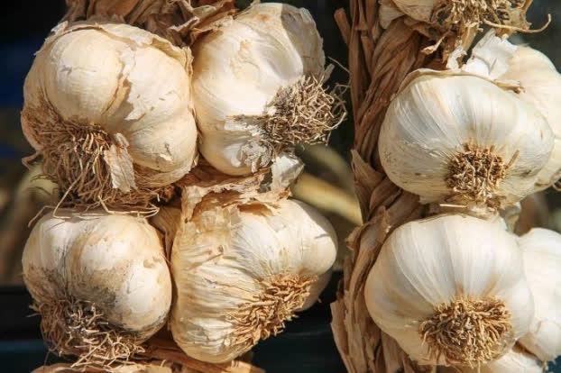 9 thực phẩm 'ức chế' ung thư từ sớm, ăn hàng ngày phòng ung thư tới 90% - Ảnh 3