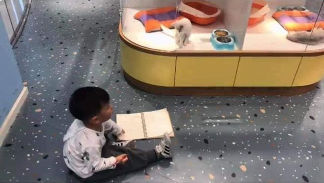 Cậu bé lăn lộn cả tiếng để vẽ mèo nộp cho cô giáo, tưởng đẹp miễn chê ai ngờ lại thành ra thế này - Ảnh 2