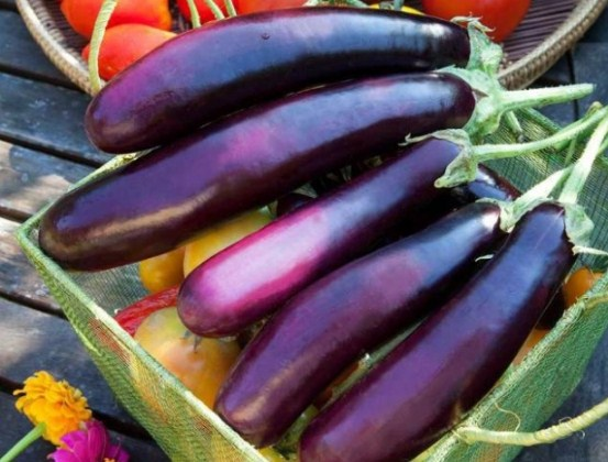 5 loại rau củ tàn phá sức khỏe khủng khiếp nếu ăn nhiều, người bị bệnh thận đặc biệt chú ý - Ảnh 4