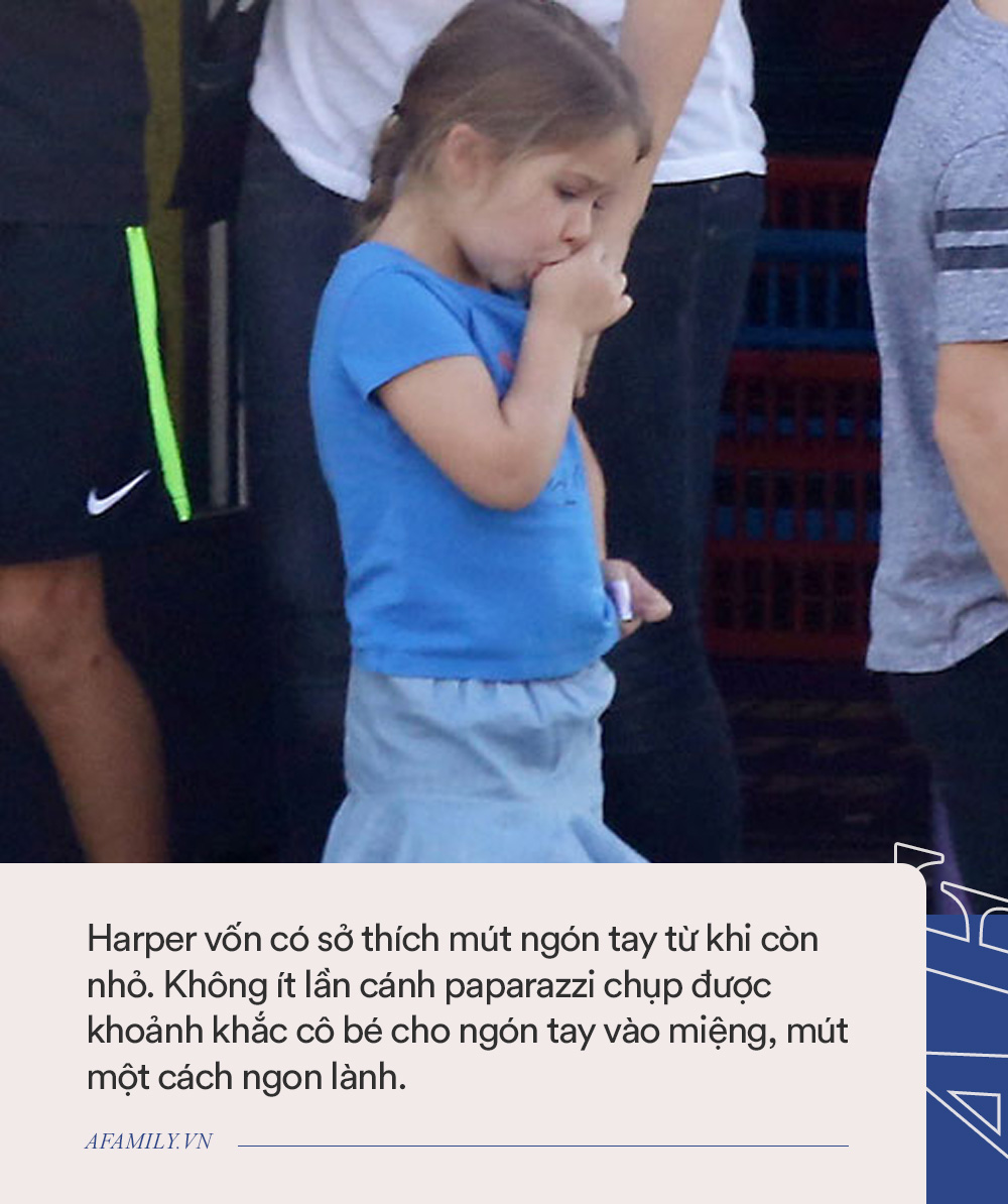 Nguyên nhân nào khiến con gái của David Beckham dù xinh như 1 nàng công chúa nhưng luôn bị chê trách? - Ảnh 6