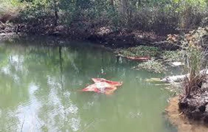 Mẹ chết lặng khi phát hiện 2 con nhỏ chết đuối ở ao nhà bà ngoại