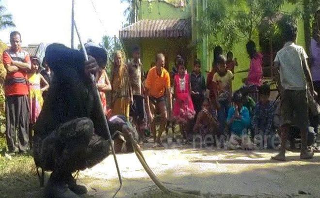 Người dân Ấn Độ quỳ vái lạy trước 2 con rắn hổ mang chúa