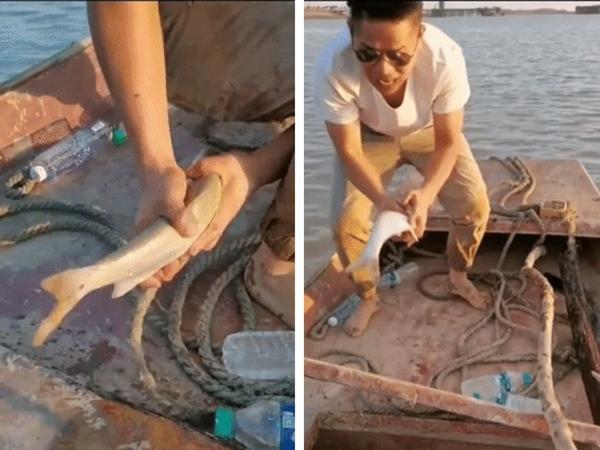 Thanh niên đánh cá số hưởng nhất năm: Cá tự nhảy từ dưới sông lên thuyền, ngồi mát ăn bát vàng là có thật!