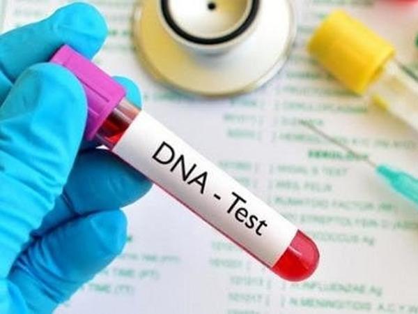Bị chê 'đổ vỏ' vì con gái không giống mình, ông bố lén đi xét nghiệm ADN để rồi xảy ra bi kịch đau lòng
