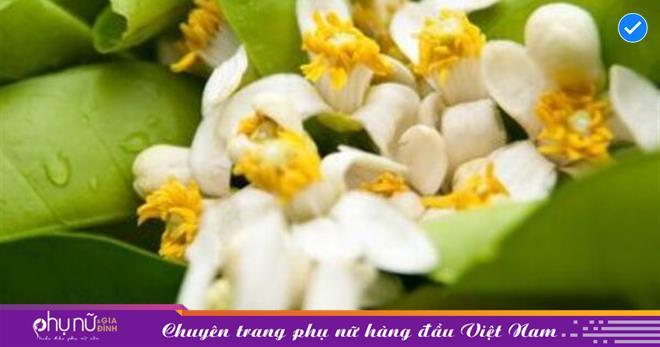Mía hoa bưởi: Món ăn vặt đơn giản trong ngày hè oi bức