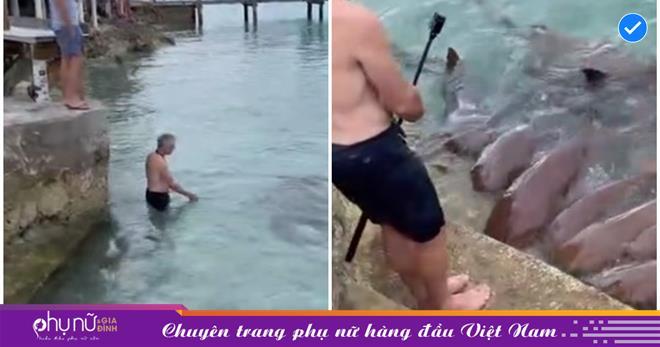 Người đàn ông liều lĩnh lao mình xuống vùng nước ken đặc 'sát thủ biển cả', lại còn có hành động 'câu dẫn' bất ngờ