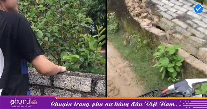 Cô gái hái trộm vải còn gây thêm chuyện 'trời ơi đất hỡi' rồi 'bỏ của' phóng xe đi mất khiến netizen phẫn nộ cùng cực