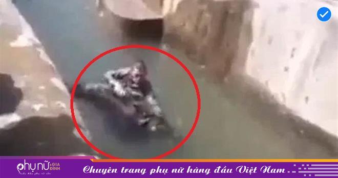 Chuyện ngược đời: Gấu nâu bị người đàn ông say xỉn túm cổ và dìm xuống nước khiến ai cũng phải ngỡ ngàng bật ngửa