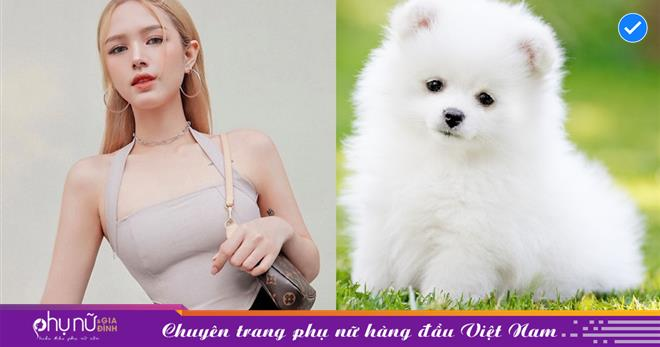 Vợ streamer giàu nhất Việt Nam mua cún cưng giá 23 triệu đồng