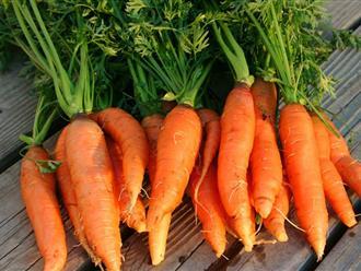 Mặt nạ cà rốt vừa tốt vừa rẻ