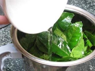 Những cách dùng 'sai bét' biến trà xanh thành thuốc độc