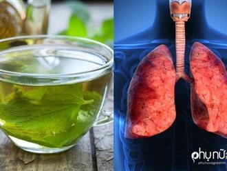 'Tiên dược' cho phổi: Trị ho, viêm phổi, viêm phế quản, hen suyễn thần tốc không cần thuốc