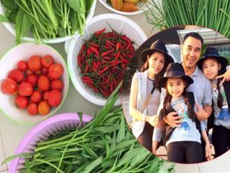 Bà xã Quyền Linh cùng các con thu hoạch rau trên sân thượng biệt thự