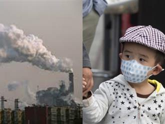 Ô nhiễm không khí: Trẻ em bị tổn thương nặng nhất