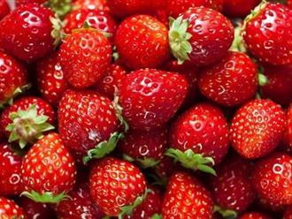 Ngực căng tròn, to ra hẳn mấy size khi ăn những loại quả này