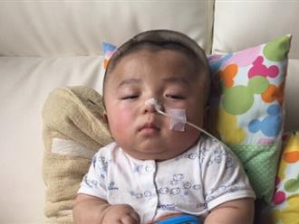 Tin vui: Bé Phạm Đức Lộc được bác sĩ cho về Việt Nam đón sinh nhật một tuổi