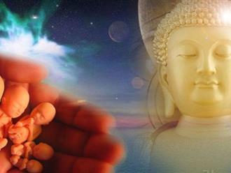 Quả báo người mẹ phá thai phải chịu theo lời Phật