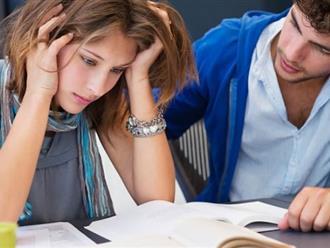 Vì sao chúng ta phải bình tĩnh khi giải quyết công việc?