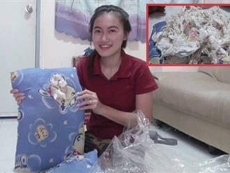 Mua gối giá rẻ, gia đình hoảng hốt phát hiện bên trong là ... băng vệ sinh và tã giấy
