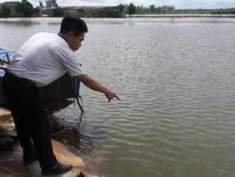 Hải Dương: Bố đẻ bàng hoàng phát hiện hai con ruột tử vong dưới ao