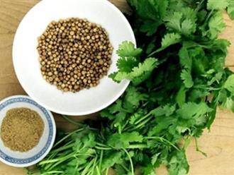 6 nguyên liệu có sẵn trong nhà giúp trị hôi miệng cấp tốc