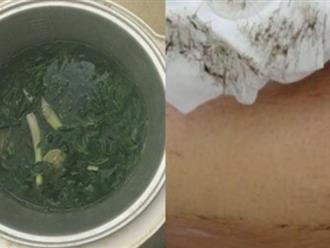 Đun 1 nắm rau ngải cứu rồi làm theo cách này, lông tay chân tự rụng sạch, không gây đau rát lại dưỡng trắng da