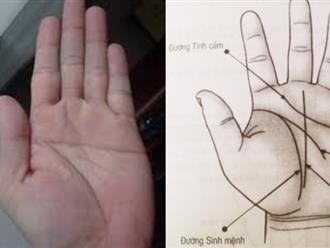 Nhìn bàn tay biết ngay vận mệnh sang hèn chính xác 99% không cần xem bói