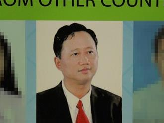 VN phản ứng phát ngôn của Đức về Trịnh Xuân Thanh